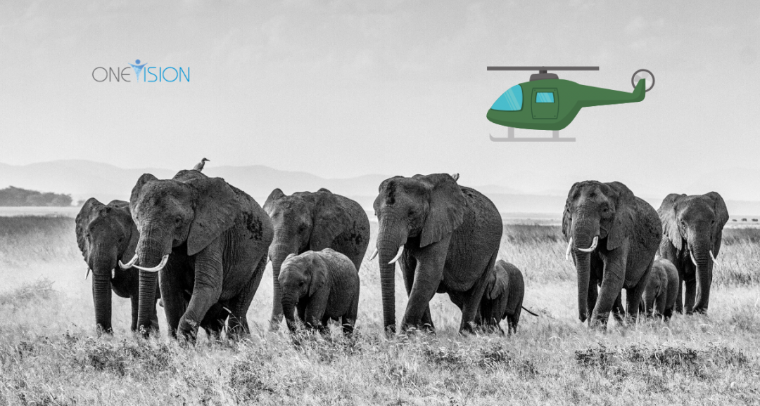Elephants and Helicopters